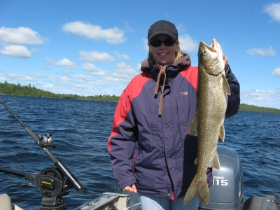 large lake trout nw ontario